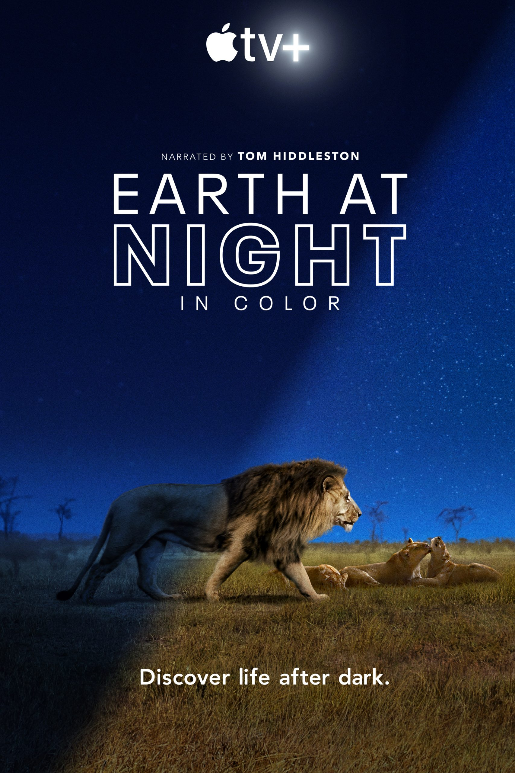 Earth at Night in Color S01 Ep 1 وثائقى